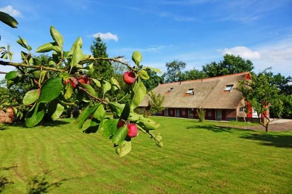 Familiehuis De Drenthse Roos in het Reestdal in Drenthe